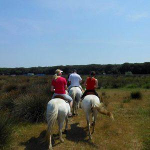 09-Escursioni-a-cavallo-Ferrara